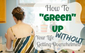 "NEW SERIES: How to ""Green Up"" Your Life Without Getting Overwhelmed"