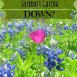 Internet Gotcha Down?