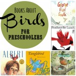 Books about Birds for Preschool