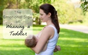 The Emotional Roller Coaster of Weaning a Toddler