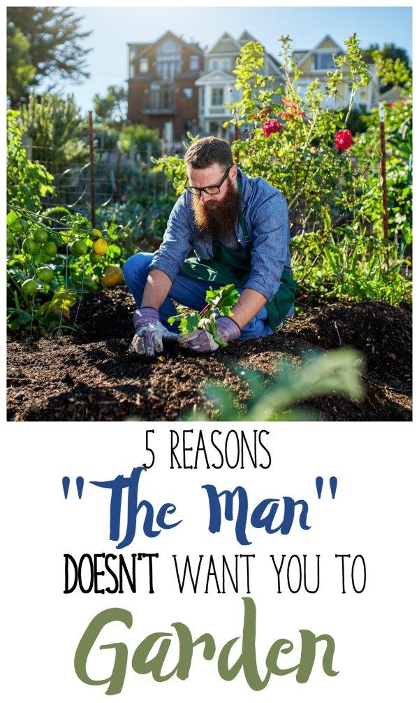 reasons-to-garden