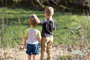 3 Tips for Fun Nature Walks with Your Kids