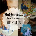 Unit Studies for a two year old: Hits and Misses