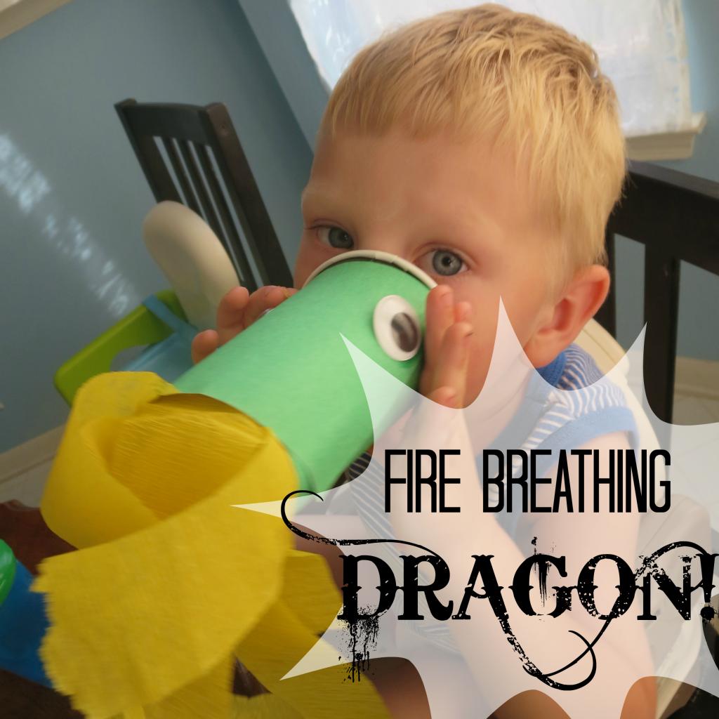 Fire breathing Dragon S