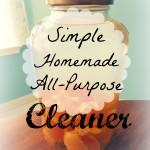 Homemade All Purpose Vinegar Cleaner