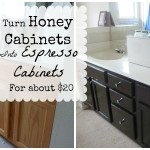 How I Turned our Boring Honey Cabinets into Gorgeous Espresso