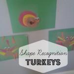 Shape Recognition Turkey Craft