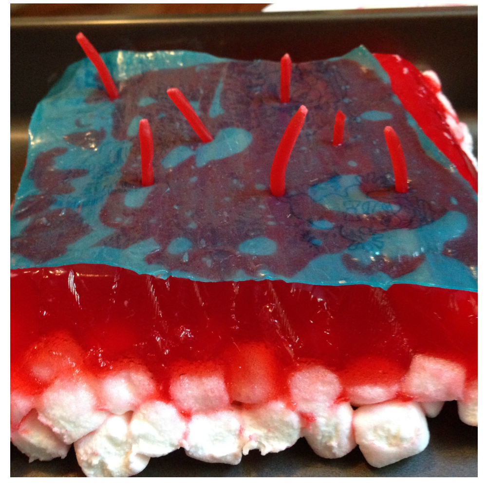Art Of Cake Making
