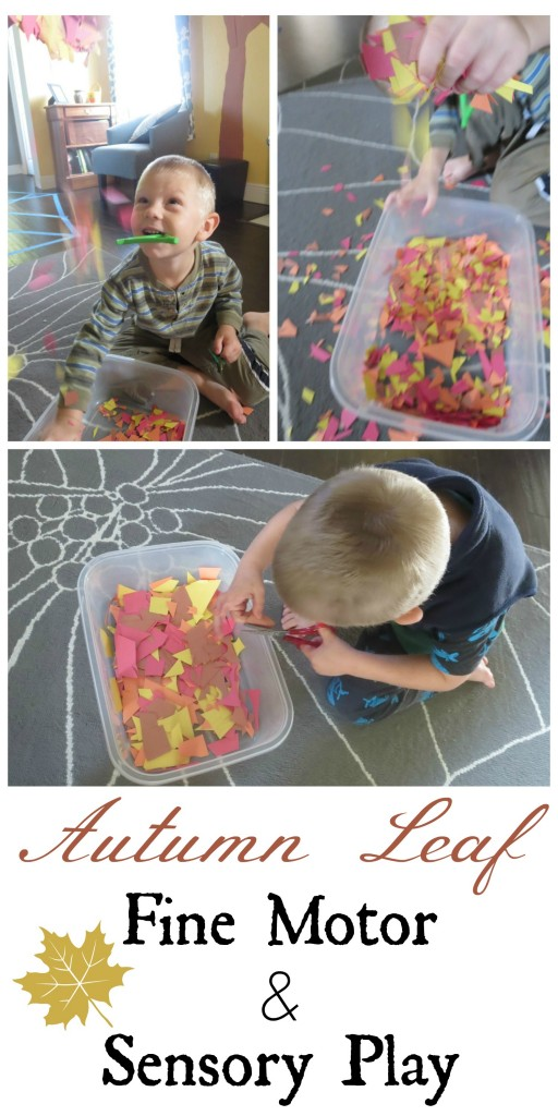 Autumn Leaf Fine Motor and Sensory Play