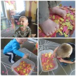 Autumn Leaves Fine Motor and Sensory Play