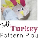 Felt Turkey Pattern Play