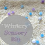 """""""Wintery"""" Sensory Bin"""