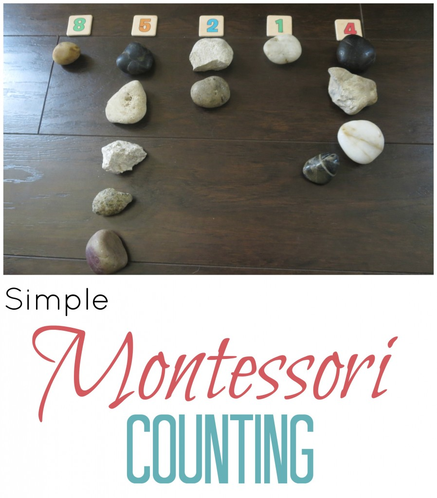 Montessori Counting Activity
