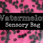 Summer Sensory Play: Watermelon Sensory Bag
