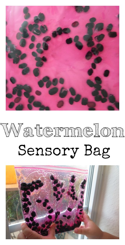 Watermelon Sensory Bag Summer Sensory Play