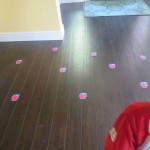 Letter Recognition Apple Game