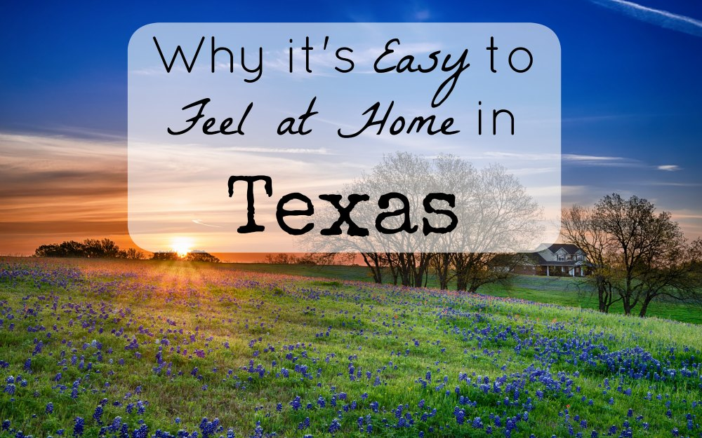 lone star eggs feel at home