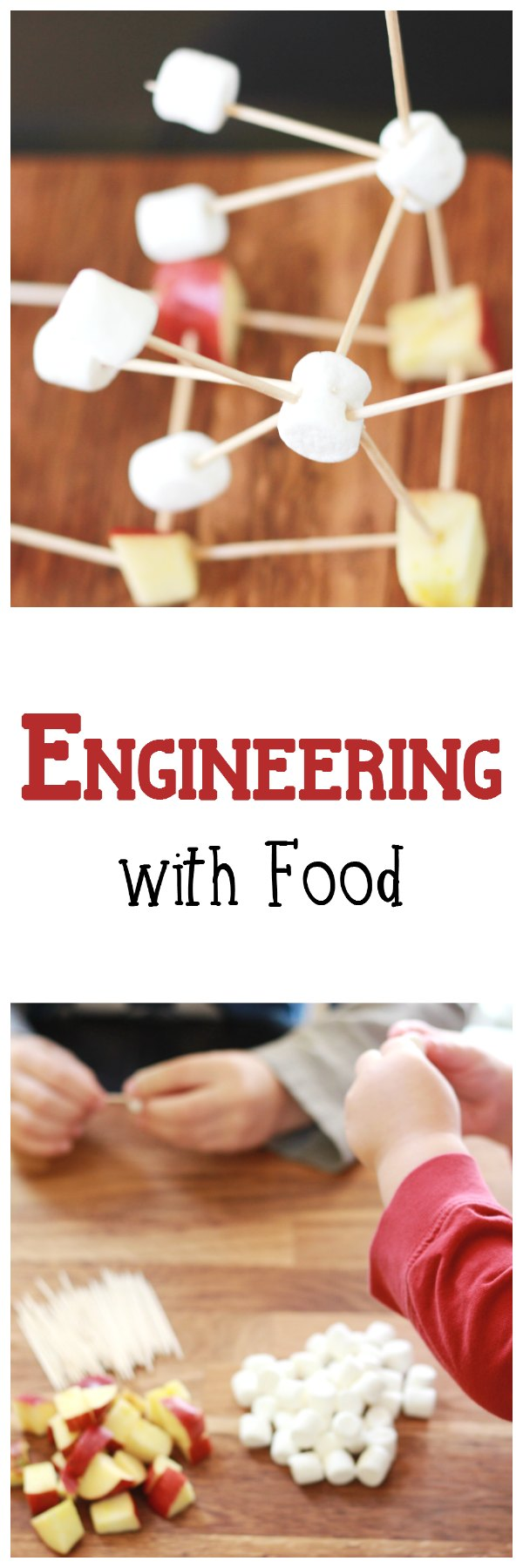 Engineering with Food