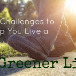 Five Mini Challenges to Help You Live a Greener Life