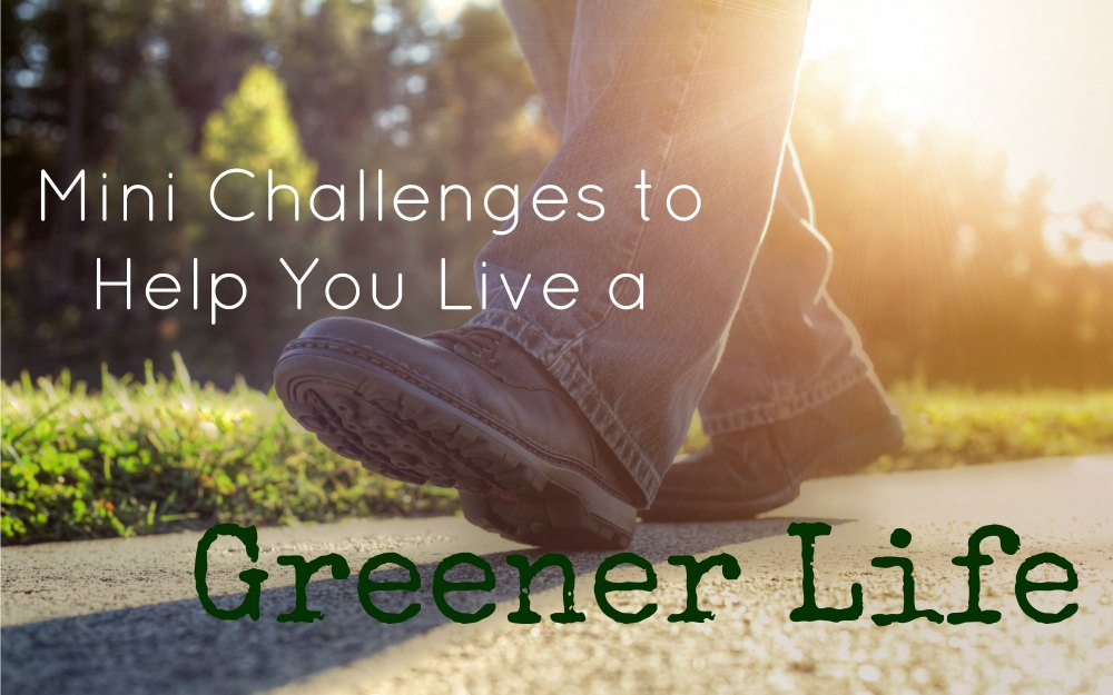 How to live a green life FB