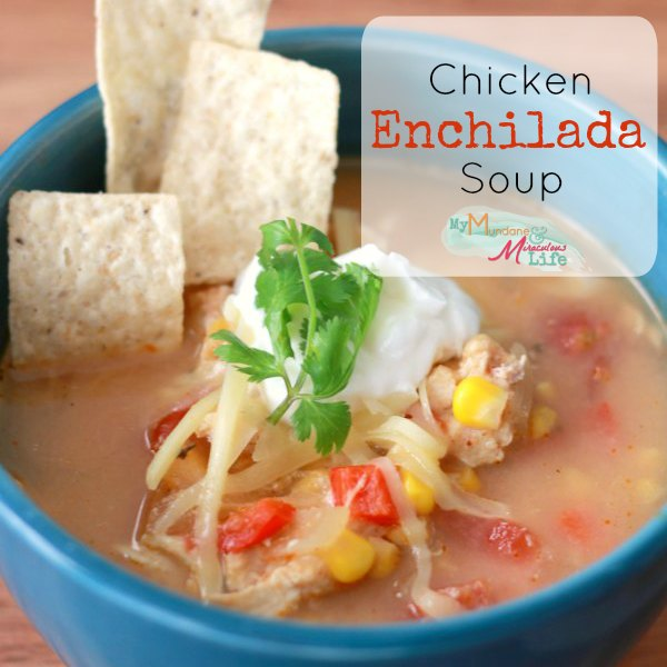 Chicken Enchilada Soup Sq