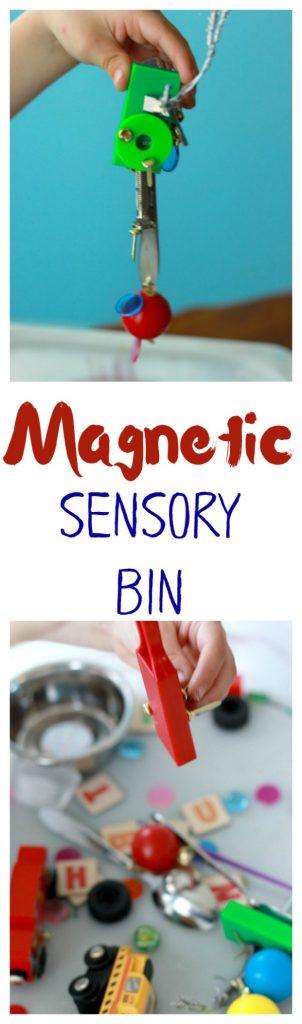 Magnetic Sensory Bin Pin