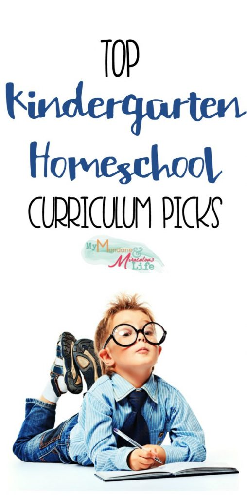 homeschooling curriculum preschool our kindergarten homeschool curriculum choices 357
