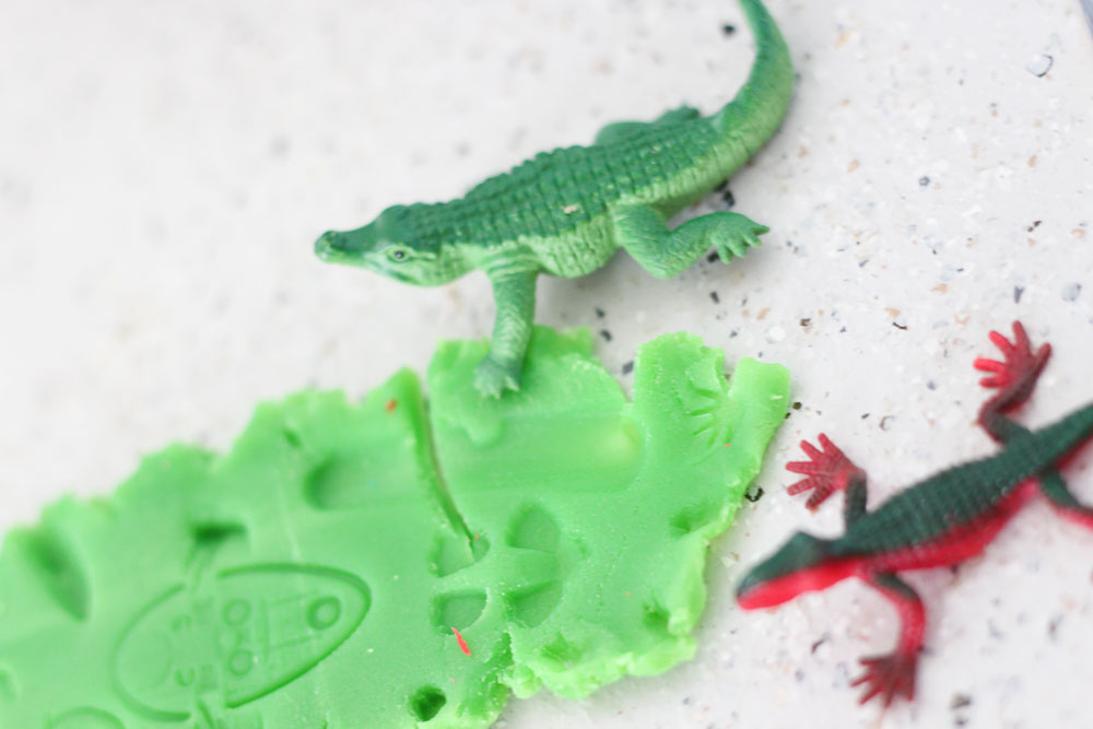 fossil-making-play-dough-11